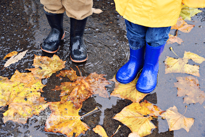 Rainboots and Leaves